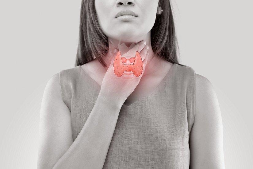 Niedoczynność tarczycy - gruczoł i jego funkcje, przyczyny, objawy i leczenie niedoczynności tarczycy.